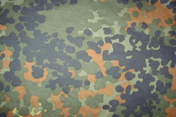 Flecktarn en version tempérée